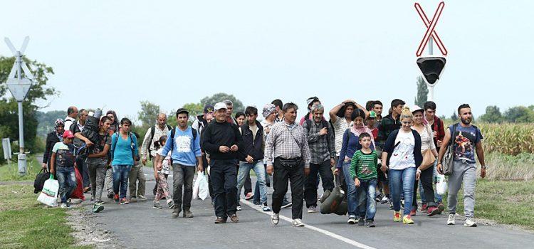 Zeman podepsal novelu, která omezí ekonomickou migraci
