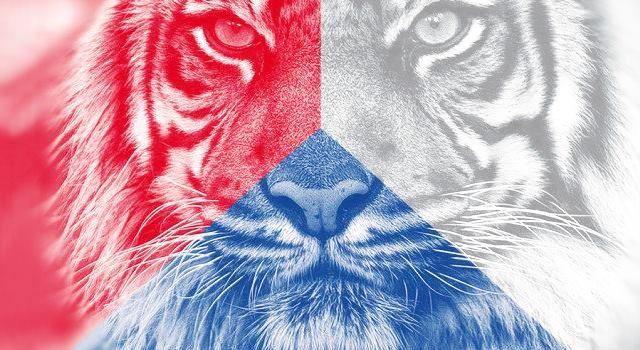 """Do boje o Hrad se zapojila """"Mlsná tygřice"""" – energická žena s politickými zkušenostmi"""
